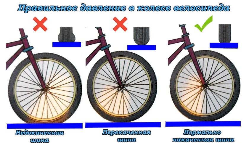 давление в шинах велосипеда фото 1